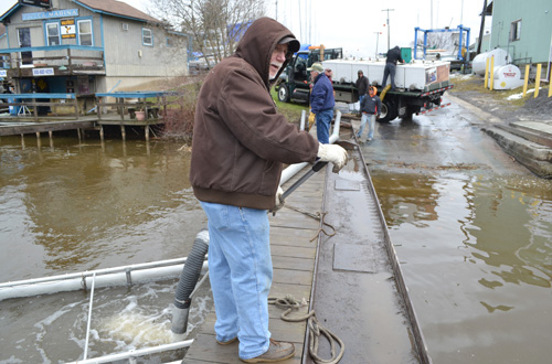 Mike Waterhouse, the Orleans County sportsfishing promotion coordinator, helps with the fish stocking in one of the pens.
